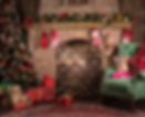 Christmas_backdrop_for_rent.png