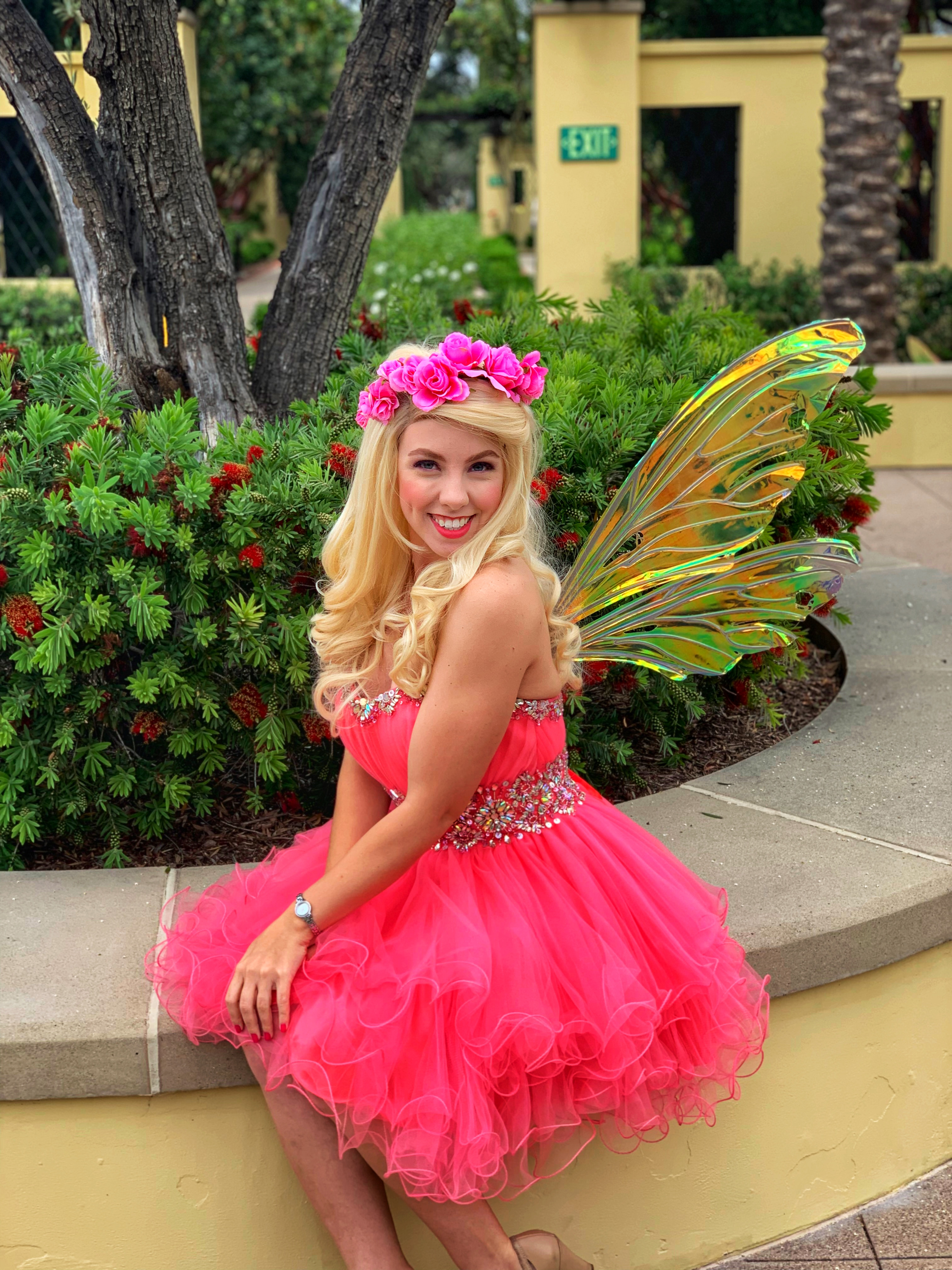 Hire fairy for party