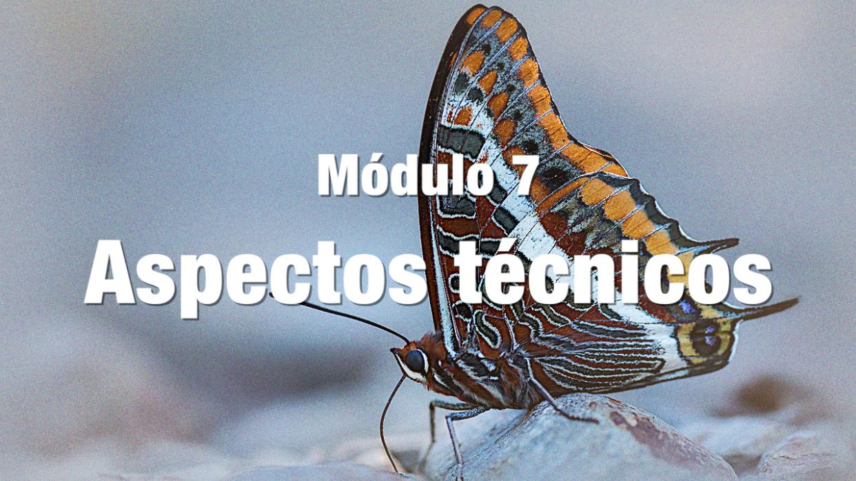 ASPECTOS TECNICOS BLANCO