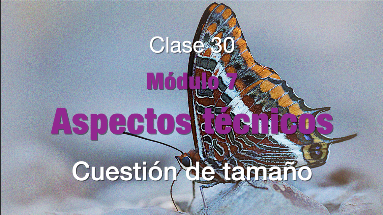 Clase_30_Magnificación