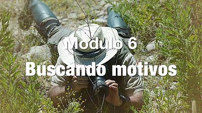 BUSCANDO MOTIVOS BLANCO.png