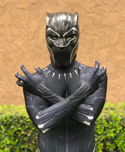 Black Panther Party Character