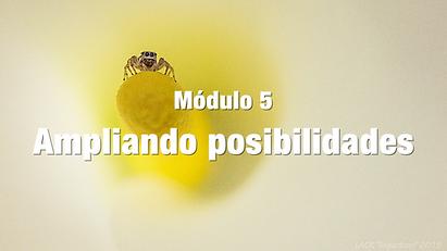 AMPLIANDO POSIBILIDADES BLANCO.png