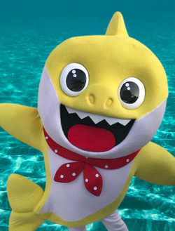 Baby Shark Party Character for hire