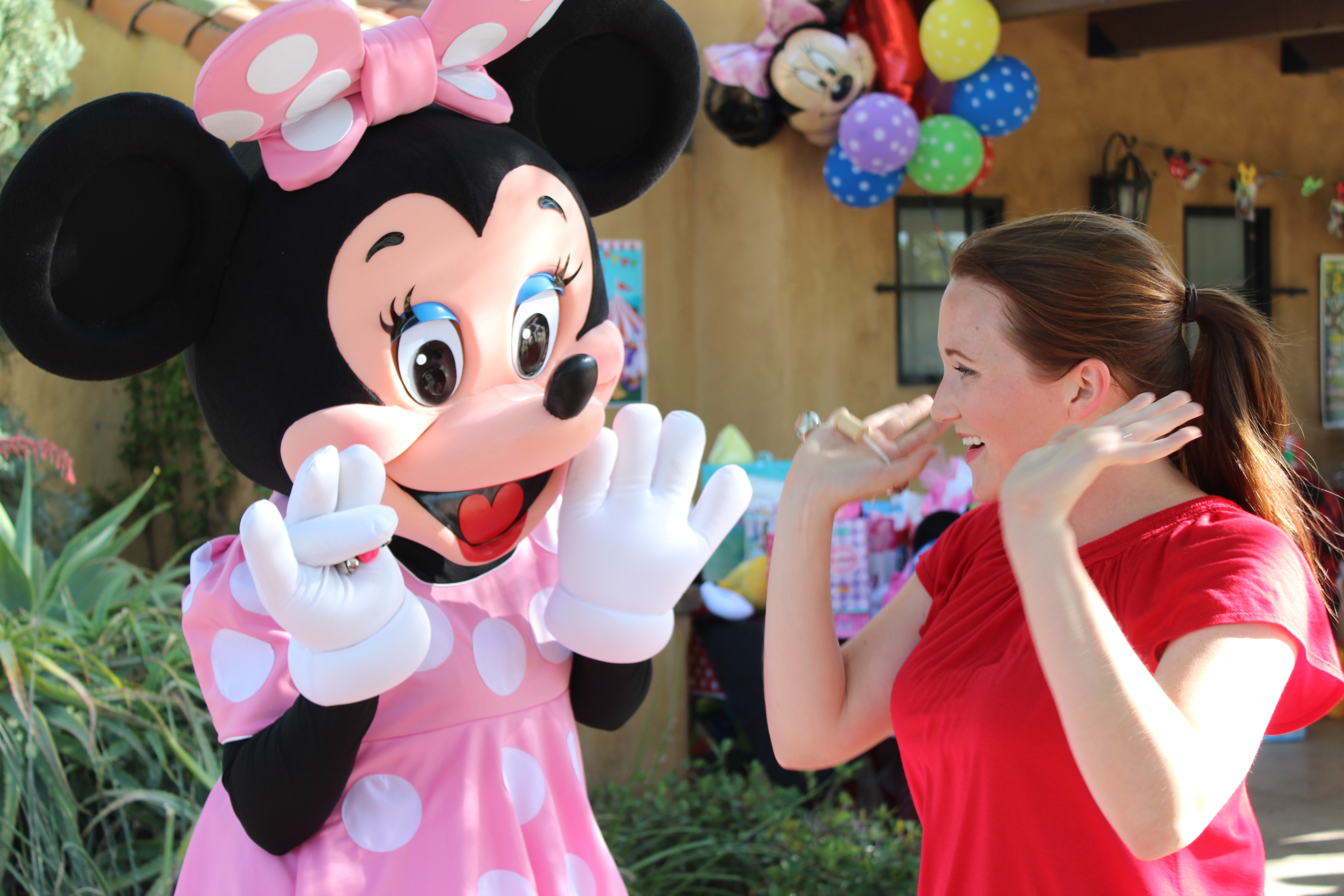 Pink Minnie Mouse Theme Party