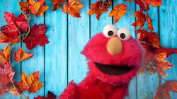 Elmo for Hire