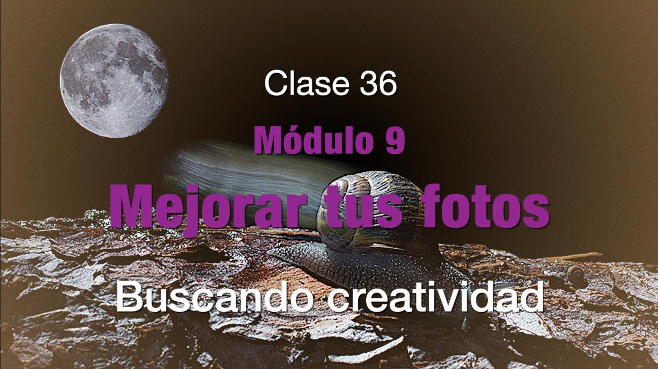 Clase 36.  Buscando creatividad