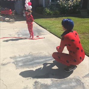 Ladybug_social_distancing_party.png
