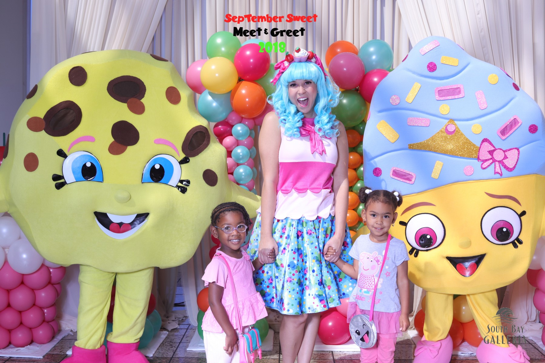 Shopkins Themed Party