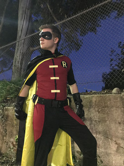 Robin party character for hire