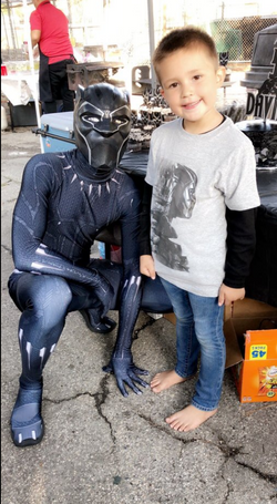 Black Panther Superhero Character