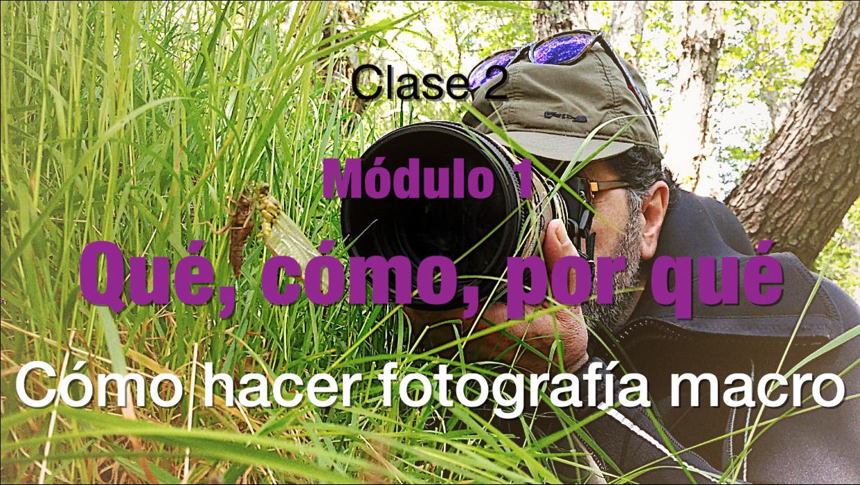 Clase 2 Como hacer fotoghrafia macro