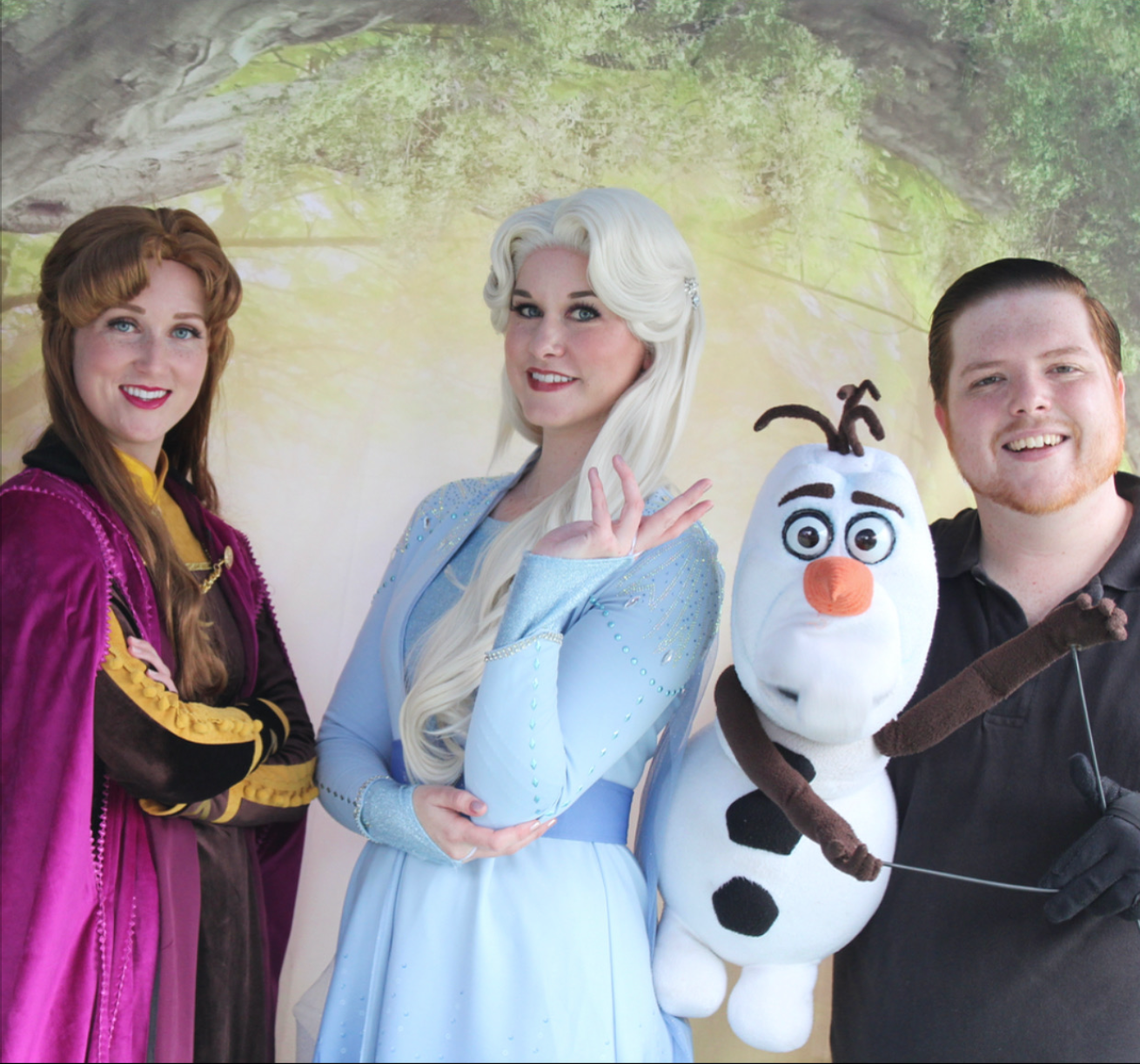 Frozen 2 party characters for hire