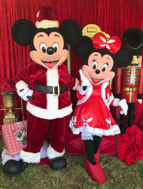Christmas Mr and Miss Mouse