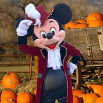Mickey_character_in_pirate_halloween_cos