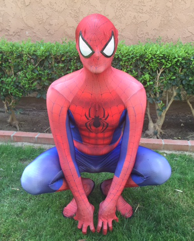 Spiderman Party Character