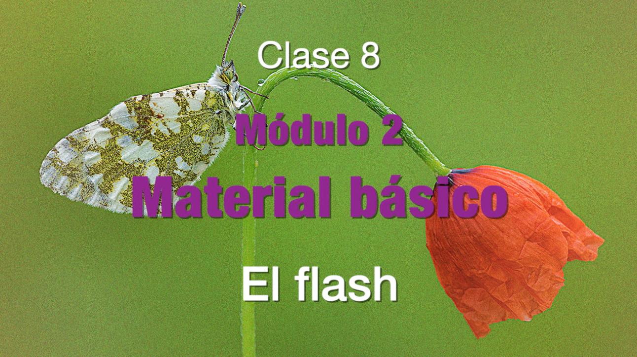 Clase 8 El flash