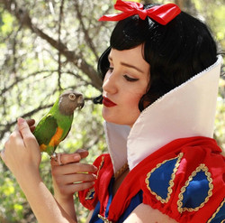 Snow White Birthday Party Princess