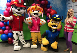 Paw Patrol characters for hire