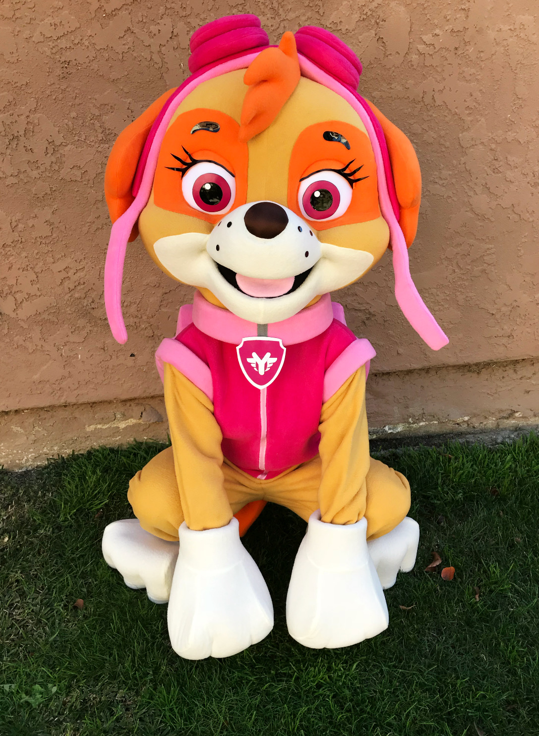 Skye Paw patrol party character