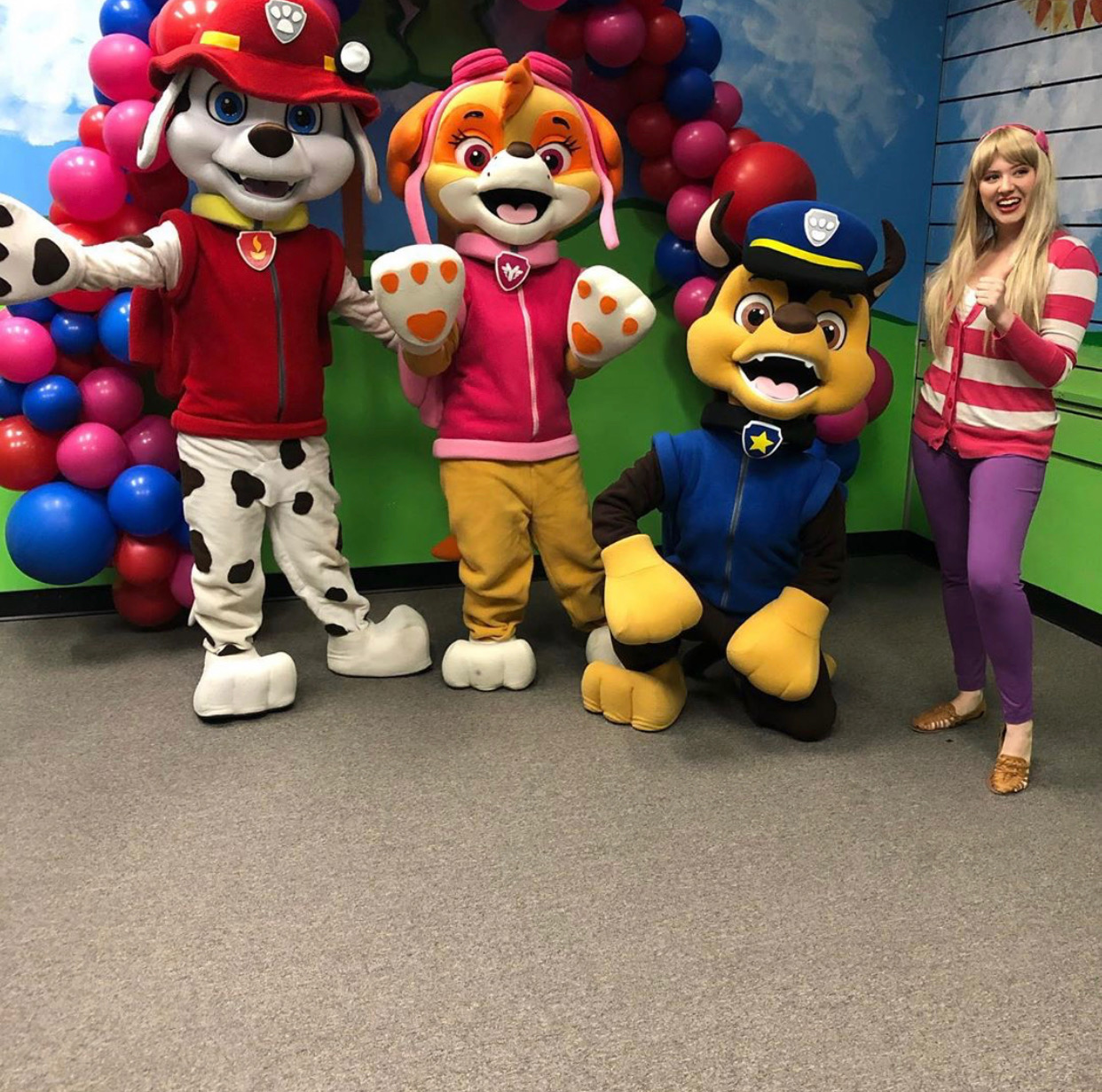Puppies from Paw Patrol for hire