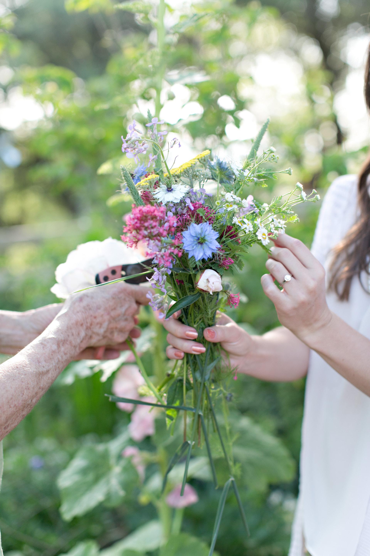 Organic Wild Flowers