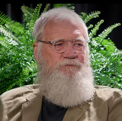 David Letterman - Between Two Ferns: The Movie