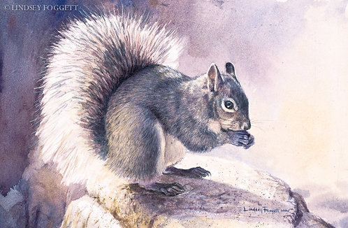 """Halo of Light""  - Squirrel (Miniature Painting)"