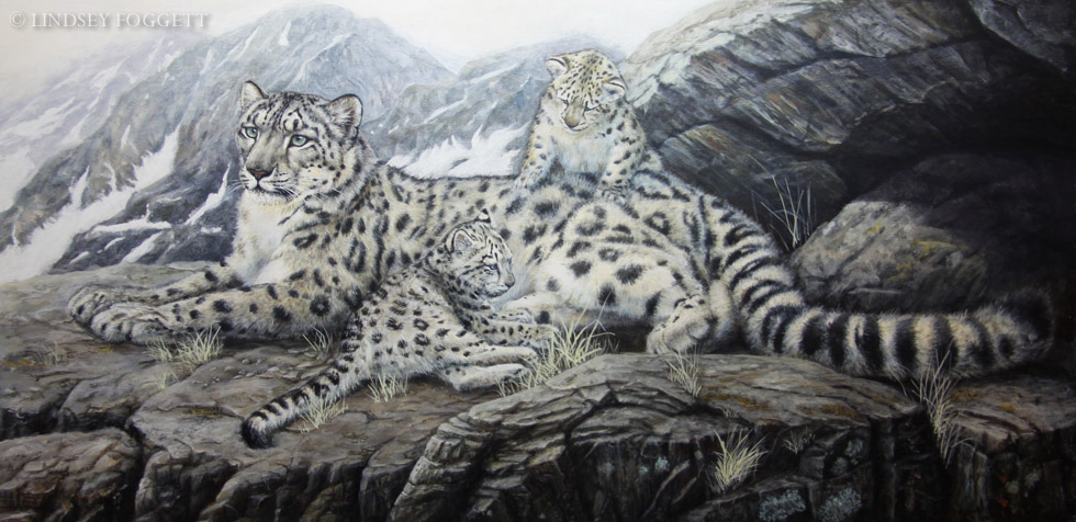 """Safe Retreat"" - Snow Leopard & Cubs"