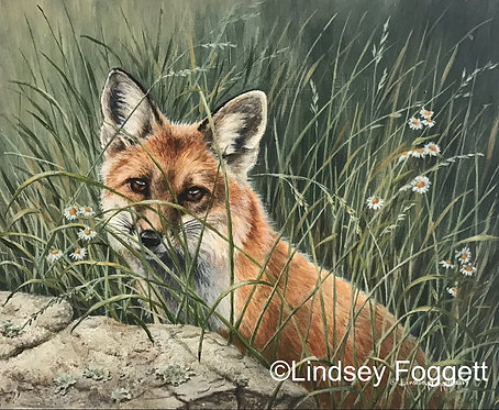 """Hidden in Spring"" - Red Fox"