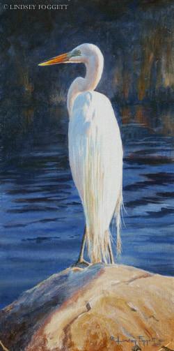 """Snowy Elegance"" - Great White Heron"
