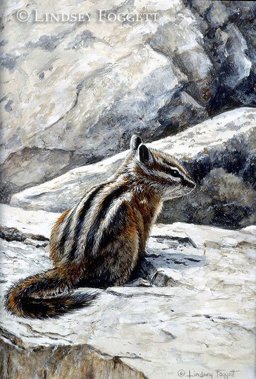 'Listening' - Chipmunk  (Miniature Painting)