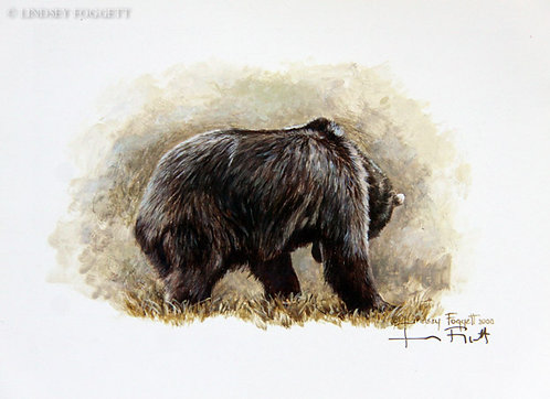 """Play Time II"" - Grizzly Bear (Miniature Painting)"