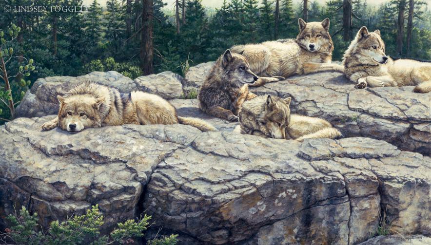 """Harmony"" - Wolves"