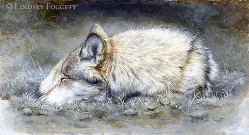 'Resting' - Wolf (Miniature Painting)