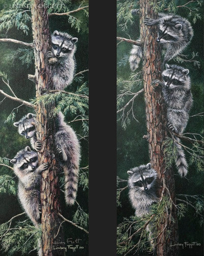 Trouble Up a Tree & Trouble Down a Tree - Raccoons