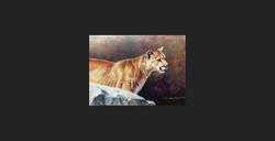 """A Movement Ahead"" - Cougar"
