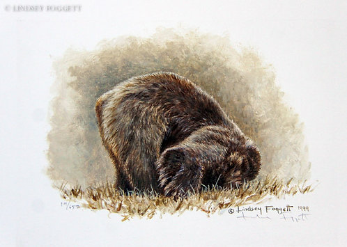 """Play Time III"" - Grizzly Bear(Miniature Painting)"