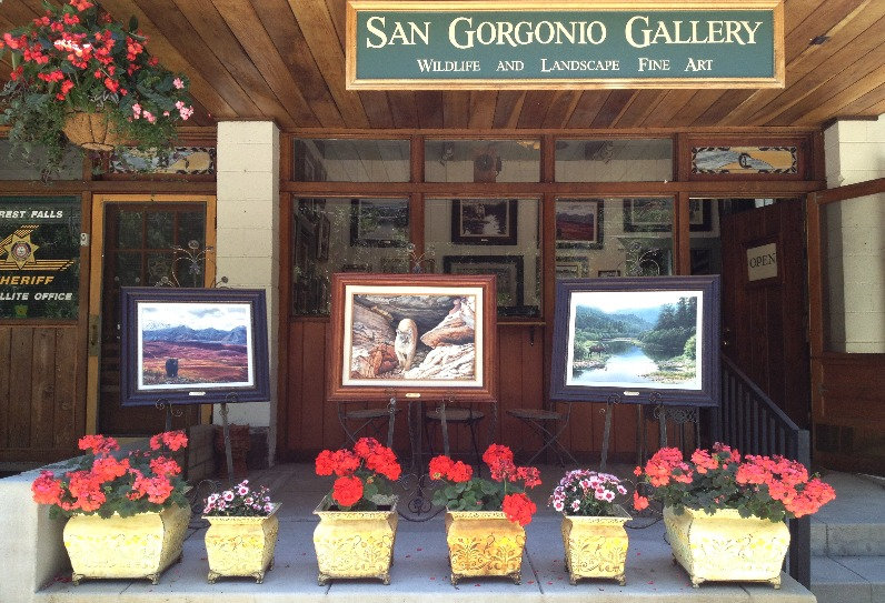 San Gorgonio Gallery Forest Falls California