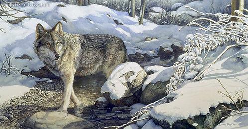 """Winter Crossing"" - Wolf"