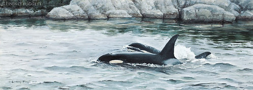 """""""The Residents"""" - Orcas (Miniature Painting)"""