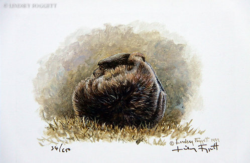 """Play Time IV"" - Grizzly Bear (Miniature Painting)"
