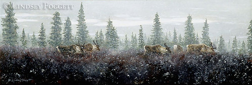 'First Snow' - Caribou (Miniature Painting)