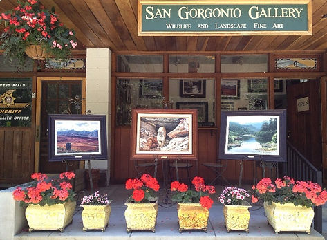 San Gorgonio Gallery Forest Falls California