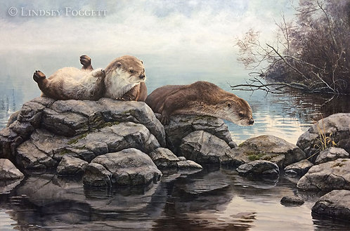 """""""New Playmates"""" - River Otters"""