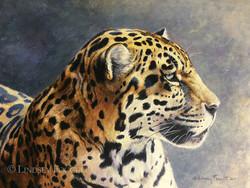 'Endangered Beauty' - Jaguar