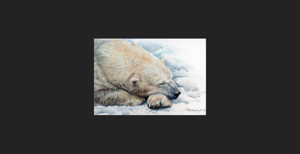 """Polar Dreams"" - Polar Bear"