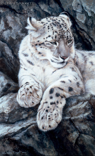 """Vantage Point""- Snow Leopard"