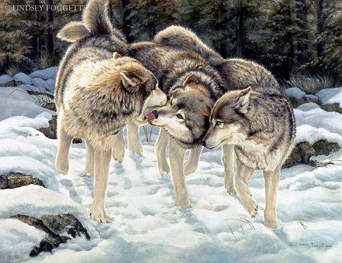 """Three Amigos"" - Wolves"