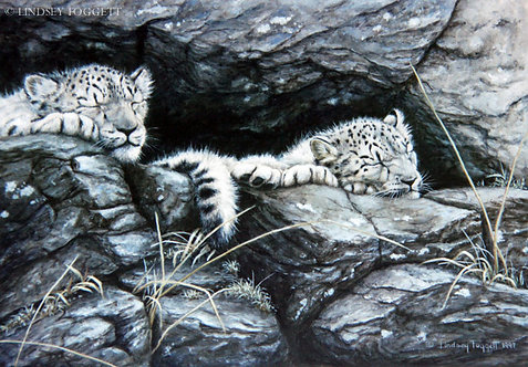 """""""On Watch"""" - Snow Leopard Cubs"""